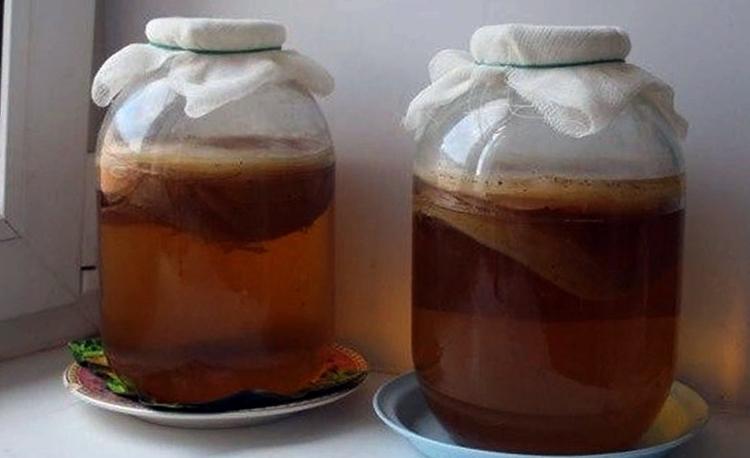 Как Хранить Чайный Гриб Если Нужен Перерыв - описание