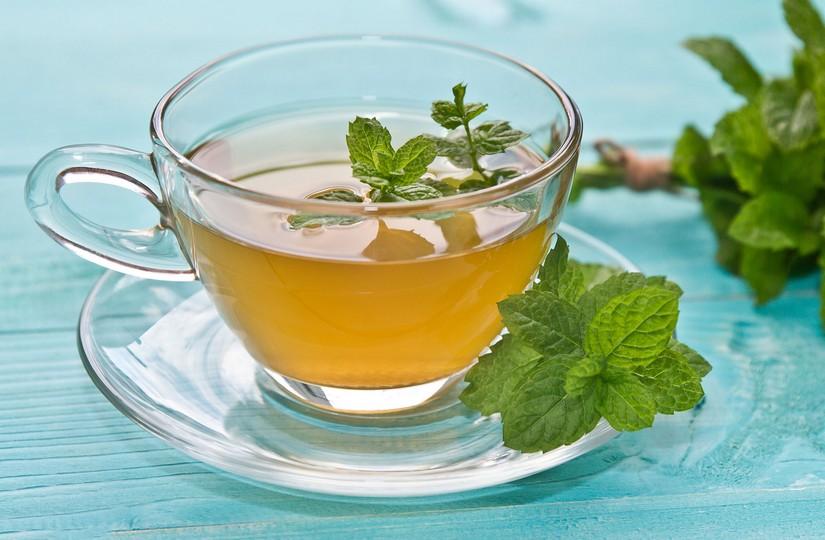 Польза Мяты Для Организма Человека В Чае - описание и основные характеристики