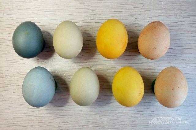 Как Покрасить Яйца Чаем Черным В Пакетиках - описание и основные характеристики