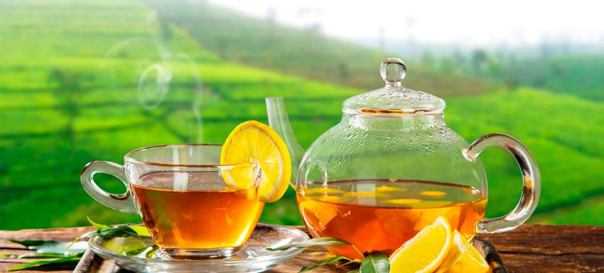 Листья Лимона В Чай Можно Ли Заваривать - подробнее о чае