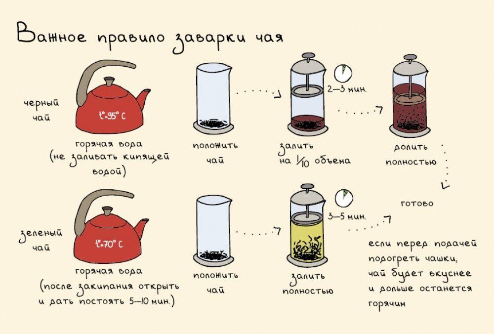 Черный Чай С Какого Возраста Можно Детям - разбор вопроса