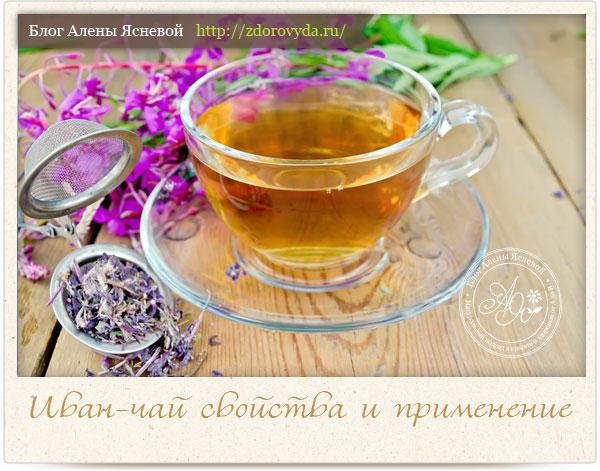 Цветы Иван Чая Полезные Свойства И Приготовление - советы