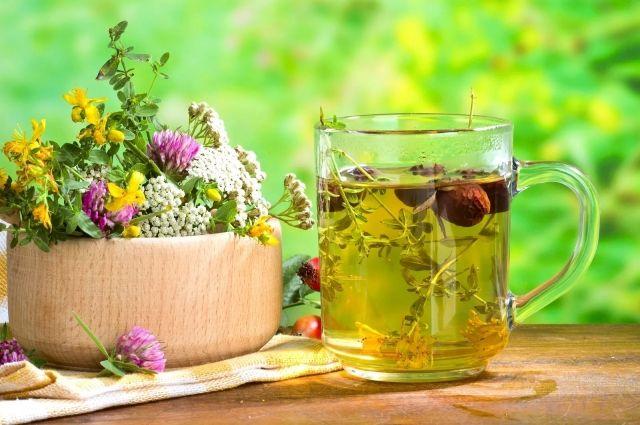Можно Ли Пить Вчерашний Зеленый Чай Заваренный - описание