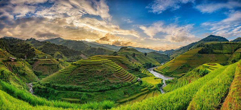 Рисовые Террасы В Му Кан Чай Вьетнам - детально о чае