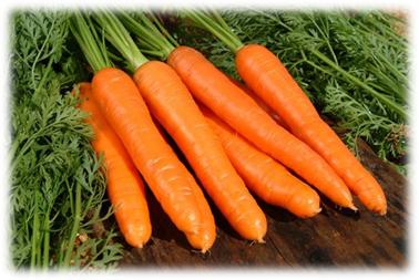 Чай Из Ботвы Моркови Польза И Вред - советы