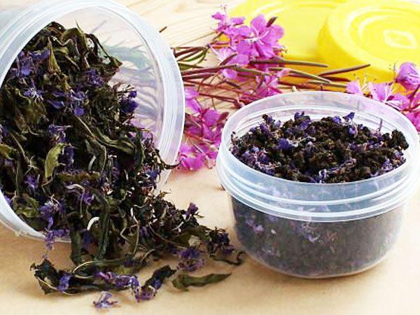 Чай Из Кипрея Полезные Свойства И Противопоказания - детально о чае