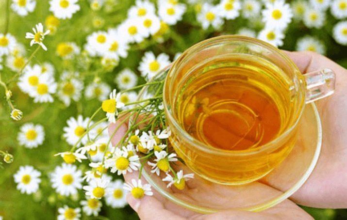 Ромашковый Чай Польза И Вред Для Женщин - описание и основные характеристики