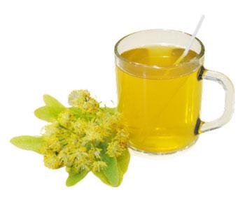 Чем Полезен Липовый Чай Цвет Для Здоровья - подробнее о чае