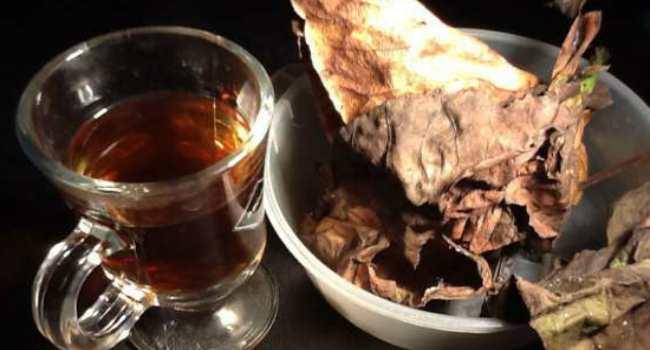 Какие Листья Бадана Собирать Для Заваривания Чая - разбор вопроса