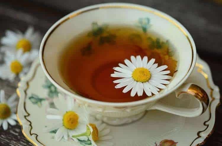Ромашковый Чай На Ночь Перед Сном Польза - детально о чае