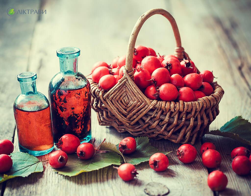 Боярышник Чай В Пакетиках Польза И Вред - описание и основные характеристики