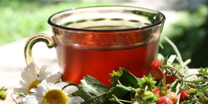 Чай Из Листьев Земляники Польза Как Заваривать - разбор вопроса