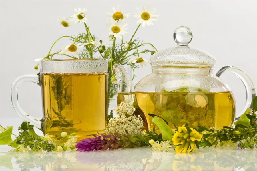 Листья Каких Растений Можно Заваривать Как Чай - описание