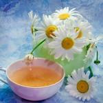 Полезен Ли Чай С Ромашкой При Онкологии - подробнее о чае
