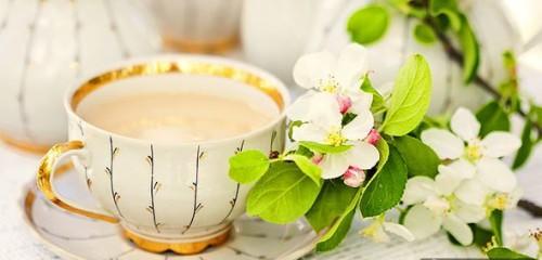 Рецепт Молокочая Для Похудения С Зеленым Чаем - описание и основные характеристики