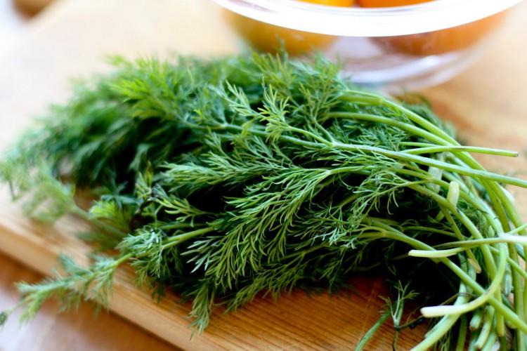 Чай Из Плодов Укропа Полезные Свойства Состав - подробнее о чае
