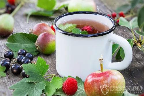 Как Правильно Заготовить Листья Смородины Для Чая - подробнее о чае
