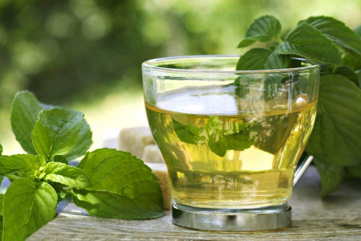 Можно Ли Зеленый Базилик Заваривать В Чай - описание и основные характеристики